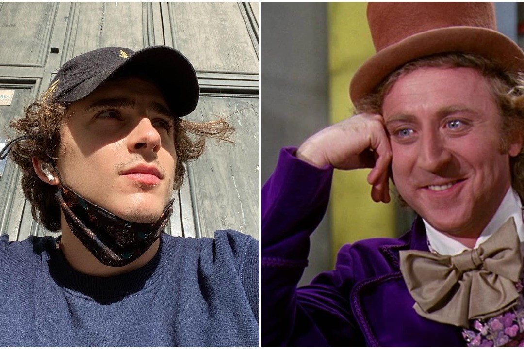 Is Timothée Chalamet seriously in the running to play Willy Wonka?