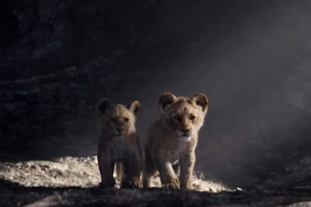 Listen To Donald Glover And Beyoncé Duet In A New Lion King