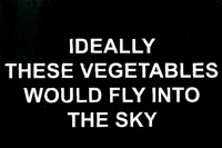 Laure Prouvost, Ideally these vegetables would fly 4