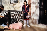 gucci year of the pig alessandro michele frank lebon