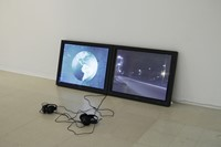 Aleksandra Domanovic, 19.30, RCA No one lives here 4