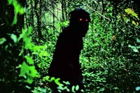 UNCLE BOONMEE WHO CAN RECALL HIS PAST LIVES (Apichatpongg) 0