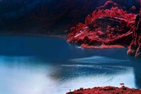 Richard Mosse_ Lac Vert_Courtesy Edel Assanti and