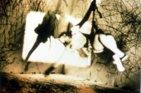 Carolee Schneemann, Up To And Including Her Limits 3