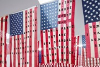 Cali Thornhill Dewitt's 29 Flags 2