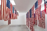 Cali Thornhill Dewitt's 29 Flags 1