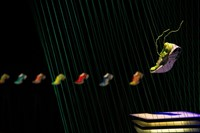 Nike-Free-Flyknit-_display_large