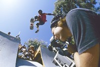 Stacy Peralta 1