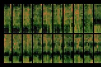05_MartinDittus_CalendarHeatmap 4