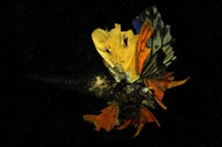Mat 