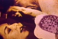 Dirty Looks_Carolee Schneeman_Fuses 2