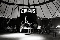 CIRCUS_P3_COver 0