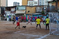 dog slum Pedro 15