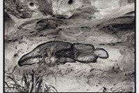 Ana Mendieta's La Tierra Habla (The Earth Speaks) 4