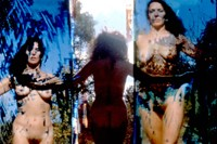 Carolee Schneemann at PS1 3