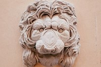 A lion head captured on the streets of Rome Gucci 5