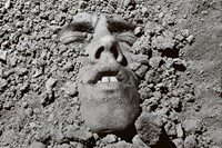 David Wojnarowicz, Brush Fires in the Social Landscape 4