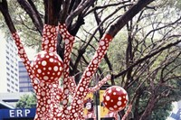 Ascension of Polka Dots on the Trees, 2006 17