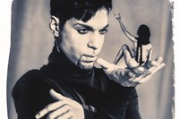 Steve Parke's Picturing Prince 4