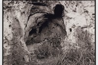 Ana Mendieta's La Tierra Habla (The Earth Speaks) 5