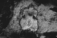 Ana Mendieta's La Tierra Habla (The Earth Speaks) 1