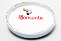 Monsanto by Mathieu Asselin 5