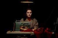 In Fabric Peter Strickland costumes design Jo Thompson 14 13