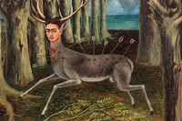 Frida Kahlo: The Complete Paintings 5