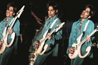 Steve Parke's Picturing Prince 5