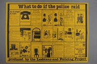 The Lesbian Archive at Glasgow Women's Library 13
