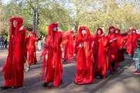 Extinction Rebellion's red-robed protesters 5
