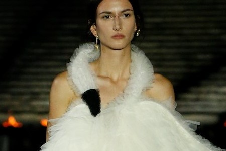 No, Dior's swan dress was not a tribute to Björk