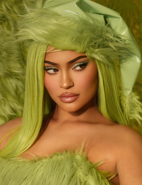 Kylie jenner cosmetics grinch collection makeup palette