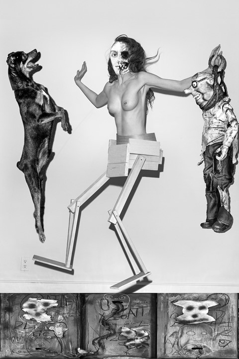 Roger Ballen and Asger Carlsen, No Joke