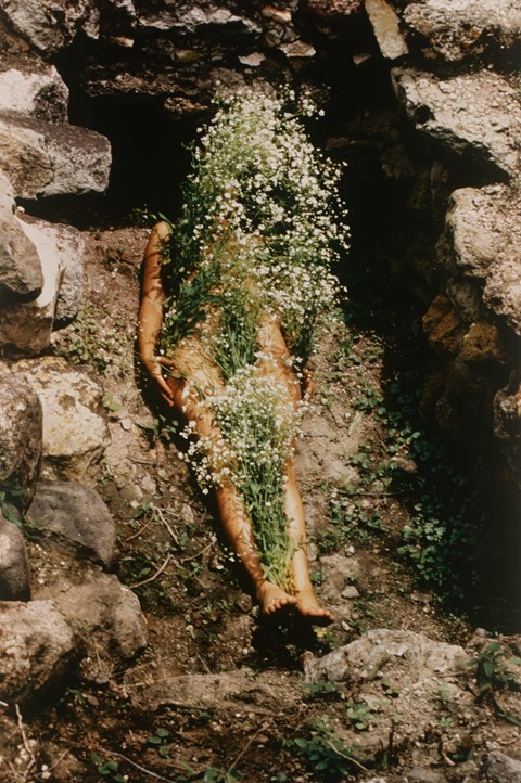 Laid Bare in the Landscape - Ana Mendieta