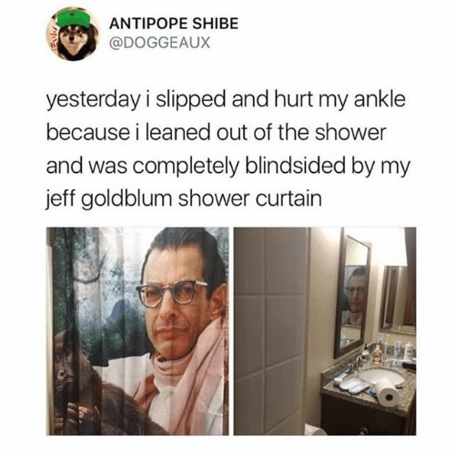Jeff Goldblum viral shower curtain tweet