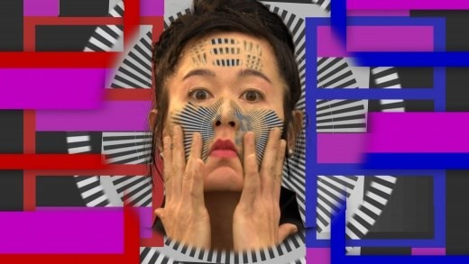 Hito Steyerl, How Not to be Seen