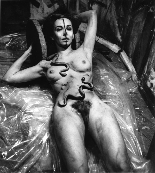Carolee Schneemann, Eye Body - 36 Transformative A