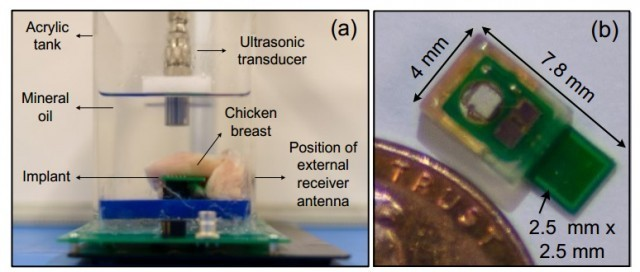 Ultrasonic-powered implants being tested on chicken
