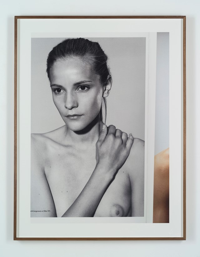 Collier Schorr, Double Take