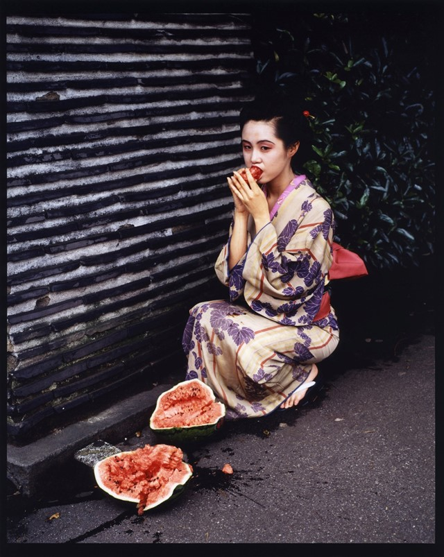 Feast for the Eyes, Araki Nobuyoshi