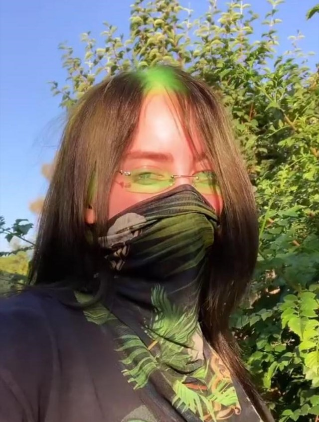 Billie Eilish Dyes Her Roots Slime Green And Fans Are Obsessed