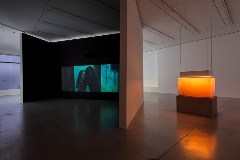PIERRE HUYGHE AT HAUSER AND WIRTH, SAVILE ROW