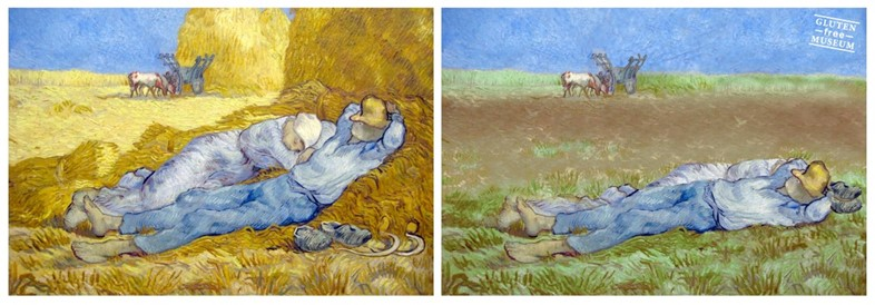 Wheat Fields, Vincent Van Gogh