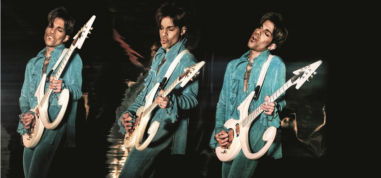 Steve Parke's Picturing Prince
