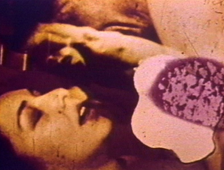Dirty Looks_Carolee Schneeman_Fuses