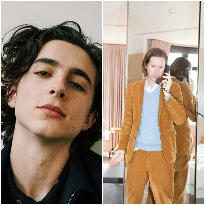 Timothee Chalamet to star in Wes Anderson's French Dispatch