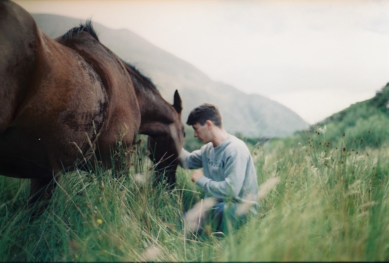 Calm with Horses film stills