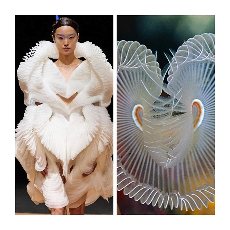 Instagram of the Week: @fashion.biologique Iris Van Herpen10