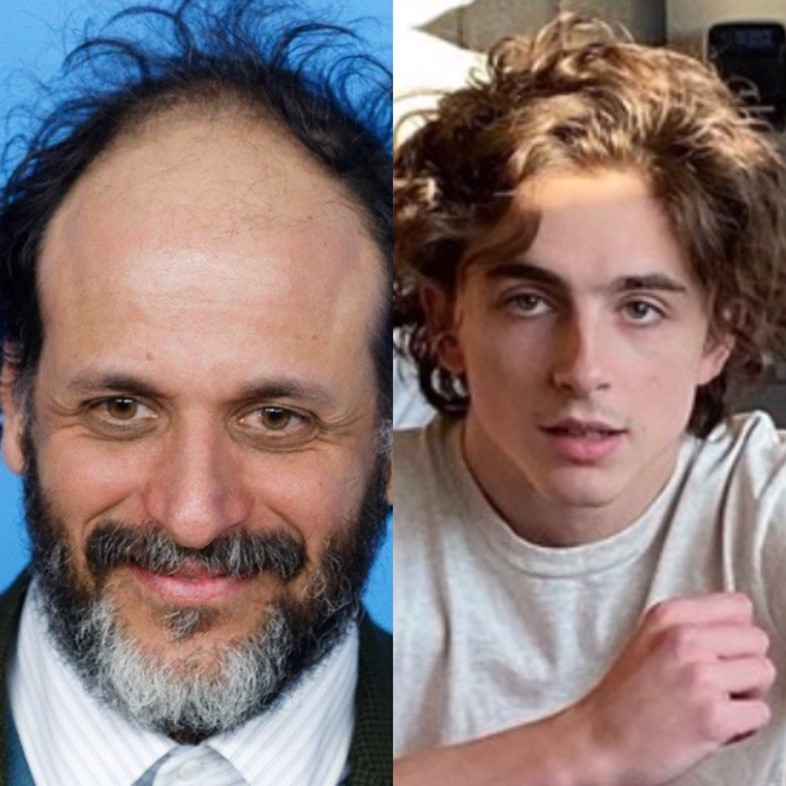 Timothée Chalamet in Luca Guadagnino's We Are Who We Are